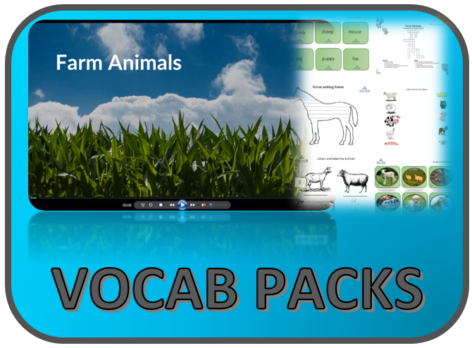 VOCAB PACKS